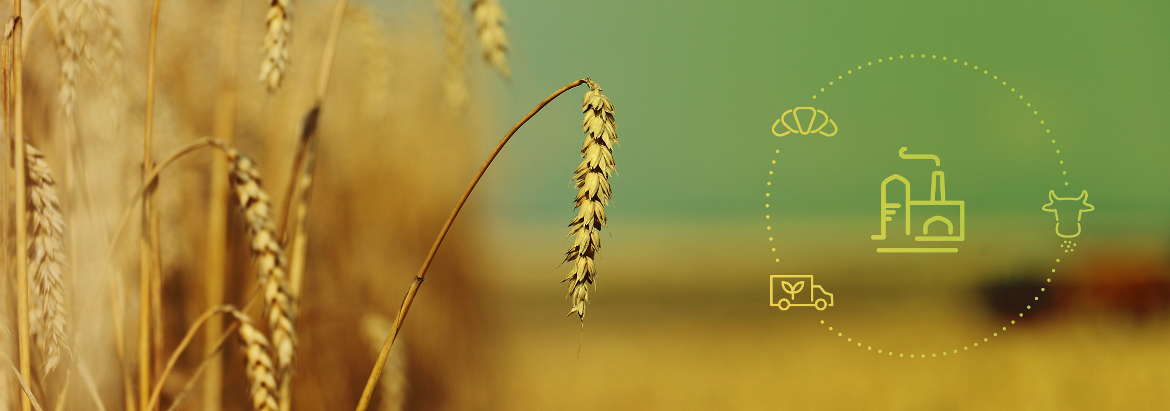 LUB - UBI - Sustainability - Food waste
